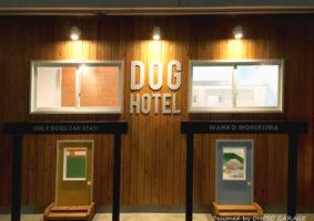 Dogホテル わんこ森くま 厚木市 / 店舗デザイン by OHESO GARAGE