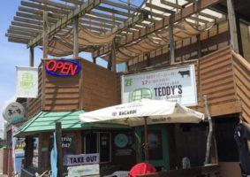 teddys7