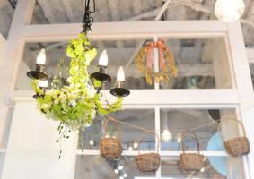 Flower Shop Paris Garden / 本厚木 / Designed by OHESO GARAGE